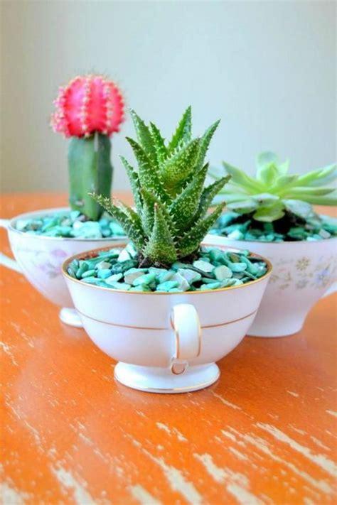 tea cup planter creative indoor and outdoor succulent garden ideas 2017