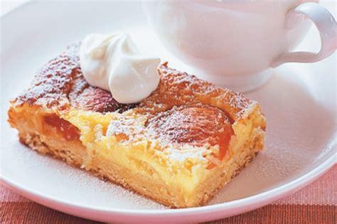 Dessert Slice apricot and coconut dessert slice recipe taste au