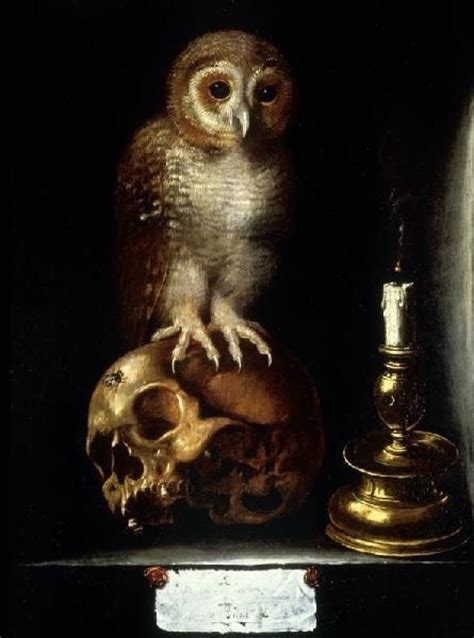 vanitas with owl anonymous 17th century vanit 233