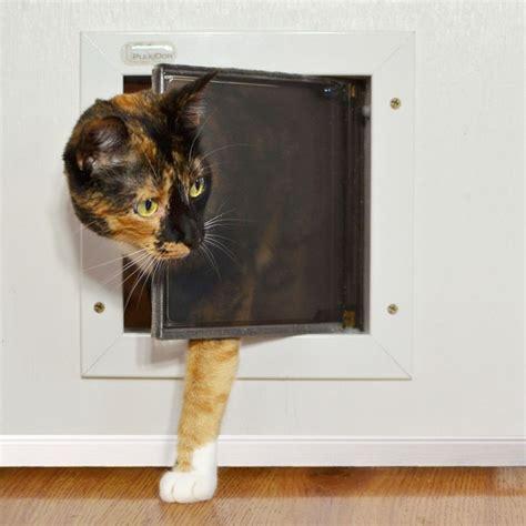 plexidor cat doors for walls insulating cat door