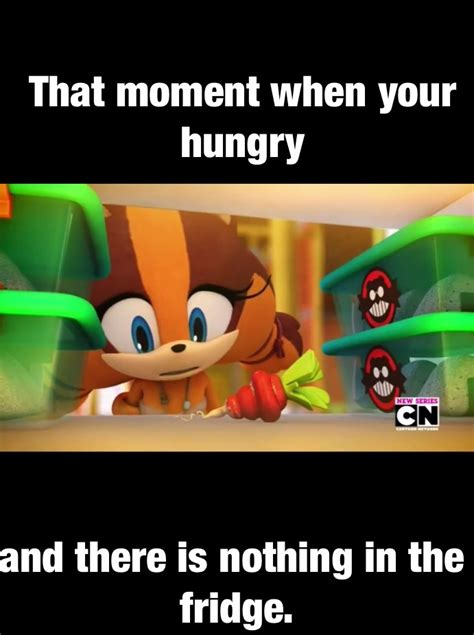 Sonic Boom Meme - chancethehedgie15260 chance deviantart
