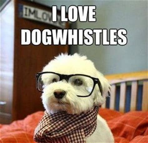 Hipster Dog Meme - sorry for the long post by hitcher89 meme center