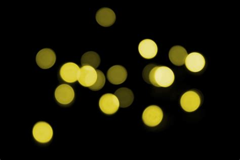Photo Of Festive Lighting Free Christmas Images Images Lights