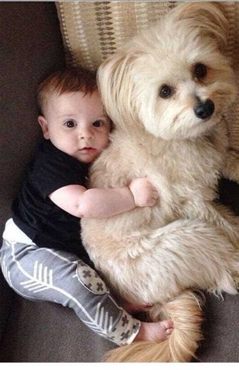 baby forever puppy best friends forever