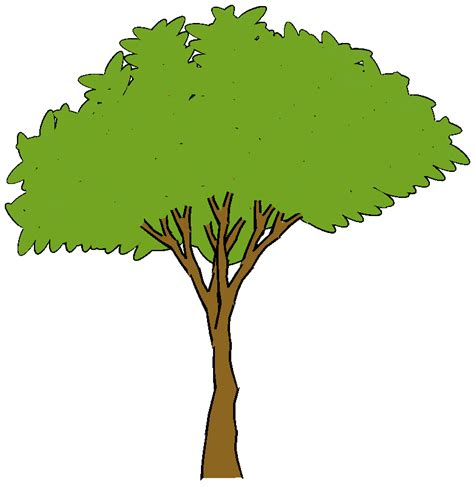 wallpaper cartoon tree cartoon tree cliparts co