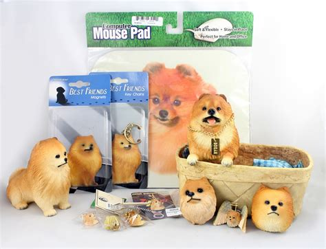 gifts for pomeranian pomeranian gifts gift ftempo