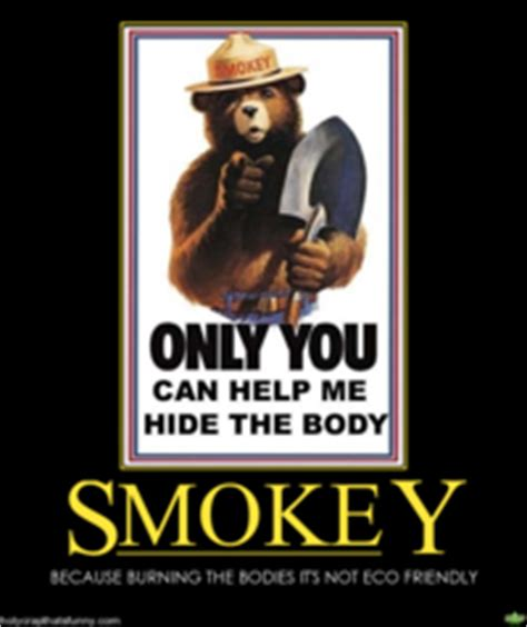 Smokey The Bear Meme - smokey the bear image gallery sorted by score know