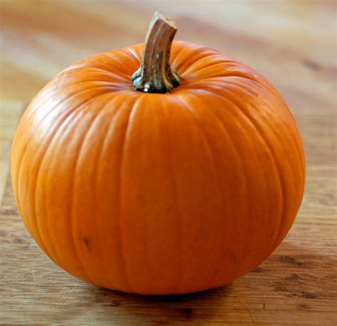 pumpkin archives easypaleo