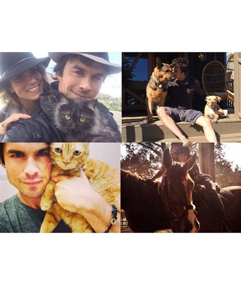 ian somerhalder nikki reed using animal rights to fight 17 best images about nikki reed on pinterest nikki reed