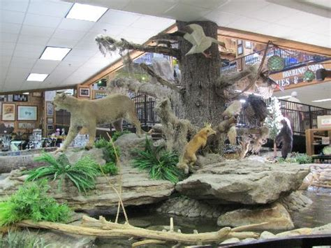 Kitchen Collectables Store animal display inside picture of smoky mountain knife