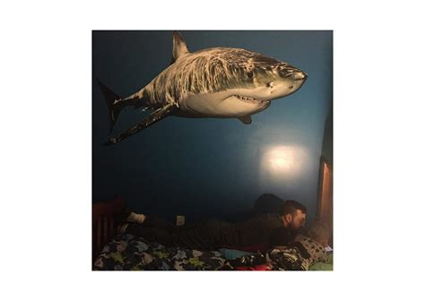 great white shark wall decal shop fathead 174 for general
