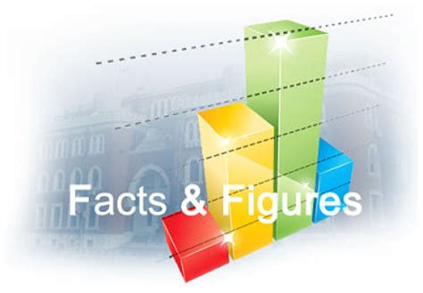 new year facts and figures tenerife facts and figures