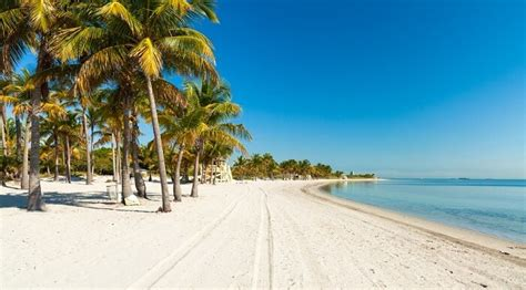 best beaches in miami best miami beaches for a rejuvenating u s