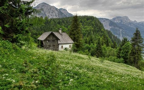 house in the mountains house in the forest mountain wallpaper nature