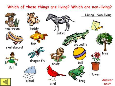 living things non living things living vs nonliving worksheet worksheets releaseboard
