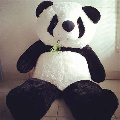 Boneka Panda Warna boneka besarr dan murah kaskus