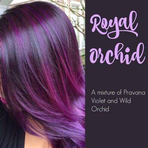 best purple shoo for highlights 25 best ideas about purple highlights on pinterest dark