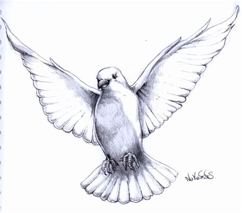 flying dove tattoo designs 11 flying pigeon designs