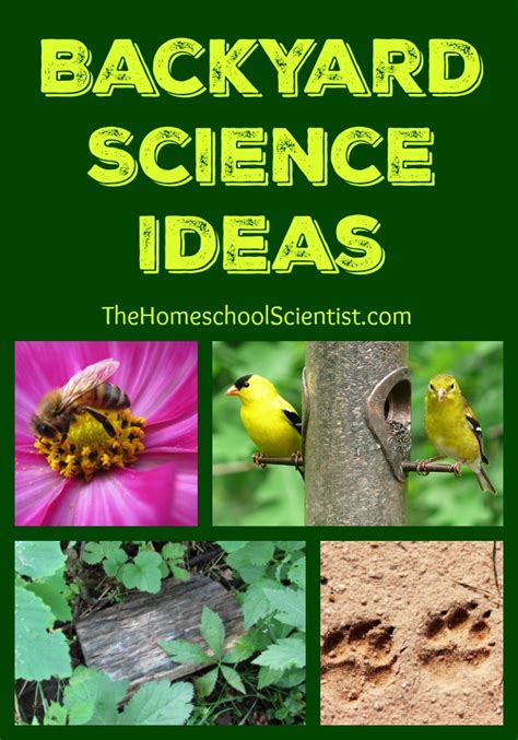 backyard science youtube backyard science youtube 28 images backyard science