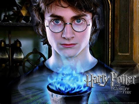 harry the harry potter and the goblet of the guys of harry potter photo 24264287 fanpop