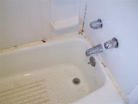 mold around bathtub picture of morgantown motel