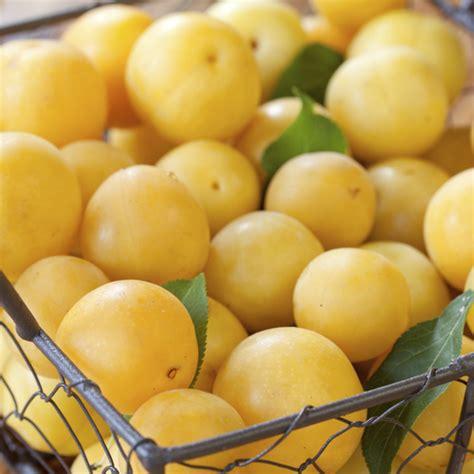 fruit 5 lettres liste de fruits jaunes ooreka