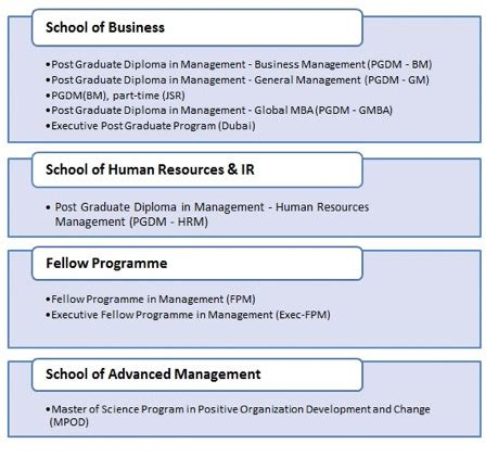 Career Launcher Mba Colleges by Essay On Human Trafficking Euromip