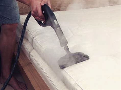 Upholstery Cleaning Gold Coast The Carpet Surgeon