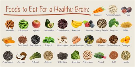 how to feed a brain nutrition for optimal brain function and repair books brain food recipes memory foundation