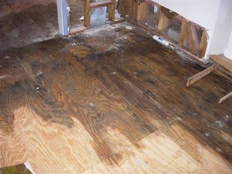 How To Tell if a House has Suffered Water Damage