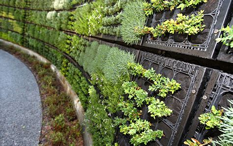 investing in agriculture permaculture community