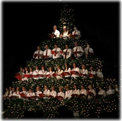sitnews singing christmas tree