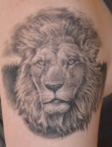 lion tattoo on pinterest lion chest tattoo for pinterest lion tattoo designs on