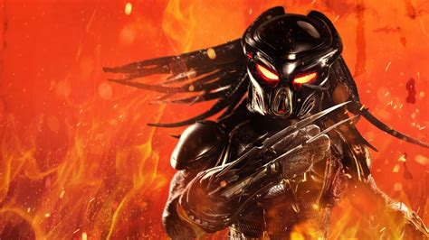 predator   wallpapers hd wallpapers id