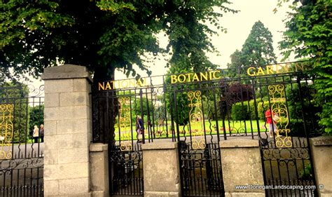 National Botanic Garden Dublin Garden Talk National Botanic Gardens Dublin Saturday July 9th 2016 Donegan