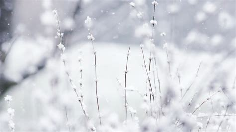 non permanent wall paper wallpaper fond ecran wallpaper hd neige winter 2012031318 54