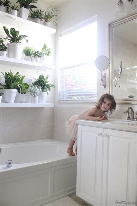plants to keep in bathroom plant wall in the bathroom house mix