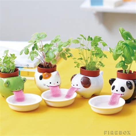 Panda Plum Garden by