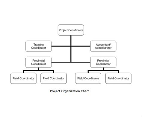 template org chart sle project organization chart 11 free documents in