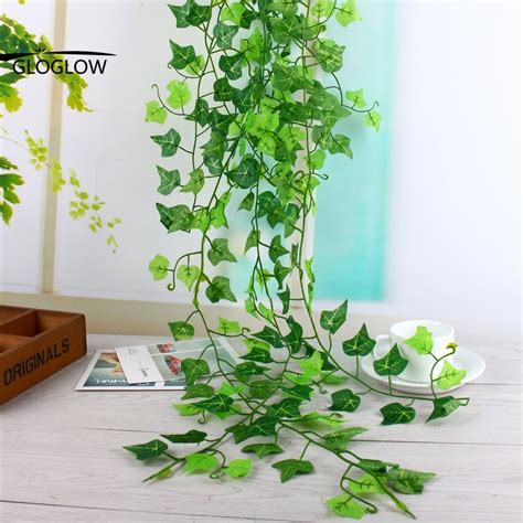indoor vine compare prices on indoor plants ivy online shopping buy