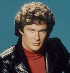 david hasselhoff puppies 1000 images about david hasseloff michael on david hooked on a