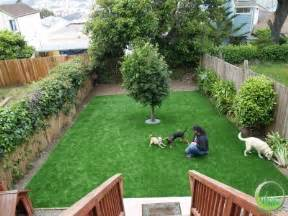 backyards for dogs google images