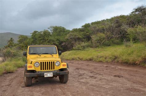 Jeep Hawaii Expedition Lanai Jeep Rental Jeep Rental On Lanai