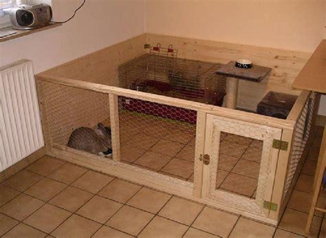 kaninchengehege innen zwergwidder kaninchen nhd 22 tipps u bilder f 252 r innen