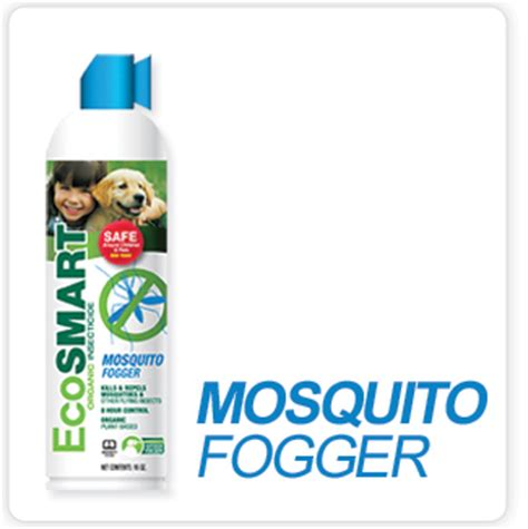 ecosmart bed bug spray ecosmart bed bug spray 28 images ecosmart travel size