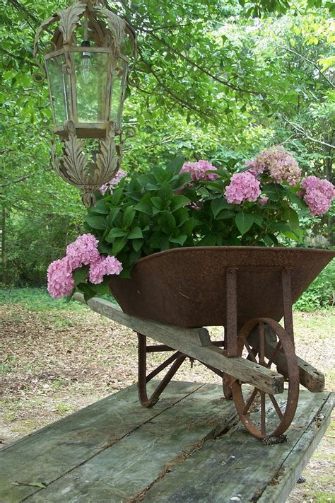 Wheelbarrow Garden Ideas Wheelbarrows Are Never Wasted Gardening Pinterest