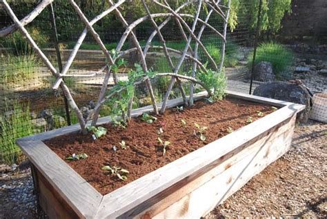 Vegetable Planterbag Raised Bed Tomato Print organic garden consulting and design in the san francisco bay area