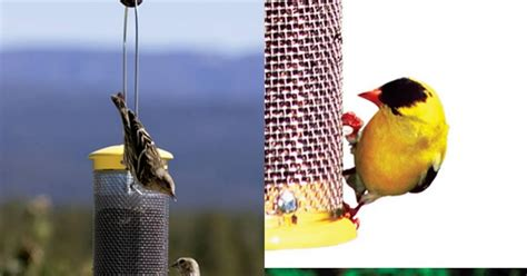 wild birds unlimited product highlight wbu mesh finch feeder