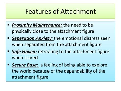 Attachment Theory Essay by Term Papers On Attachment Theory
