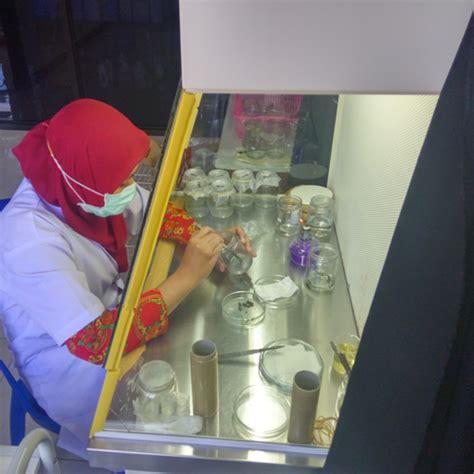Rak Kultur Jaringan laboratorium kultur jaringan koeng anggrek